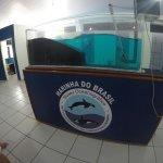 Photo of Almirante Paulo Moreira Oceanographic Museum