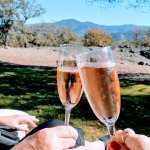 Cheers! From Maison Chandon