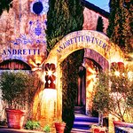 Andretti... quaint little vinyard with as much character as Mario himself!