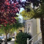 Typical residential street in The Castro