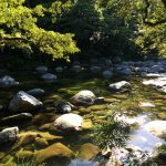Mossman River in Mossman Gorge