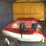 Our Tent #30