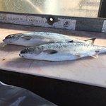 Salmon...yummy!