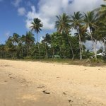 Beach infront of the resort