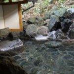 Photo of Yama no Yado Shimofujiya