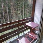 Vue balcon sur foret