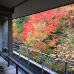 Picture postcard view of the autumn foliage from the suite