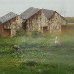 Bild från Simple Patagonia Hotel