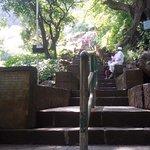 Start of Brahmagiri trek steps