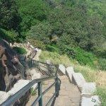 View of step trek of Brahmagiri