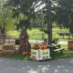 Knill's Farm Market