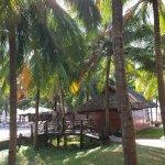 Ocean Star Resort Photo