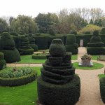 Amazing topiary garden from rm 33