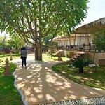 The Greenhouse Resort Foto