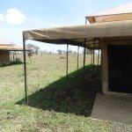 Zdjęcie Serengeti Wild Camp