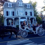 New Hope Carriage Ride