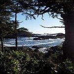 Foto de Water's Edge Shoreside Suites