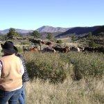 Foto de Sylvan Dale Guest Ranch