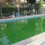 Der Pool ist so abscheulich und wenn es auf an ende der Saison ist!