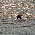 Beach Hotel Swakopmund Bild
