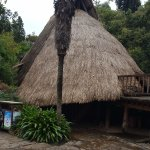 Minorities Village -- thatched hut