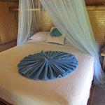 Gecko Bamboo cabin interior