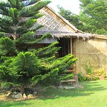 BespokeTwin  Bamboo cabin, (Kingfisher)