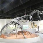 Dinosaur Exhibit, Panhandle-Plains Historical Museum, Canyon, Texas