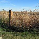Oak Hammock Marsh