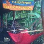 Foto de Tamarindo Backpackers