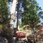 Photo of Haruna Shrine