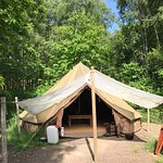Bell tents are tucked among the trees at Beech Estate Woodland