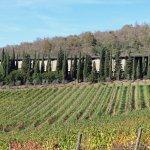 Photo de Castello di Albola