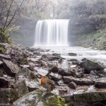 Sgwd Yr Eira Waterfall with cheeky Robin in shot.