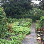Hill Top House - gardens