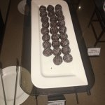 """""""Chocolate Bals"""" - All freshly made in the kitchen"""