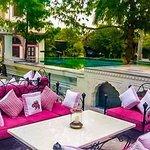 Elephant-Naila Bagh Palace