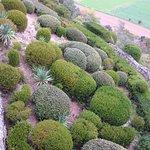 Photo de Les Jardins de Marqueyssac