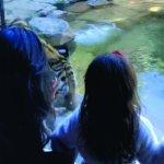Photo of Philadelphia Zoo
