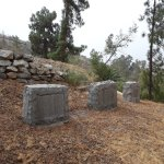 20-odd gravestones, some of which yiu can read through the fence.
