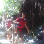 So nice... Burung Walet Waterfall
