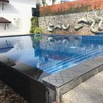 good size pool