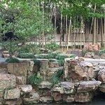 Humble Administrator's Garden Foto