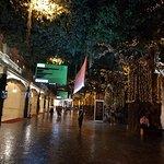 The romantic walkway under glittering lights.