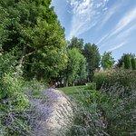 Residence La Reserve照片