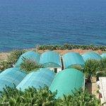 vue du balcon sur la mer et les serres de palmiers