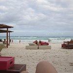 Photo of La Zebra Beach Restaurant and Tequila Bar