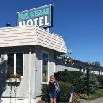 Sea Whale Motel-bild