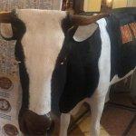 Photo of Mi Vaca