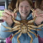 Holding a crab